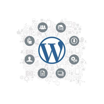 دوره آموزشی وردپرس Wordpress