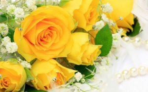 رنگ زرد در طبیعت