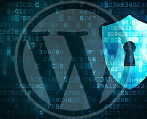 اقدامات امنیتی در سایت های وردپرسی - اموزشگاه طراحی سایت پرتو