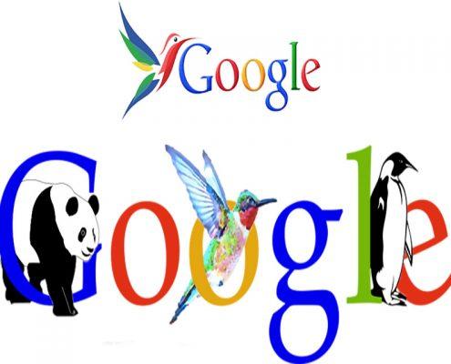 الگوریتم گوگل - سئو و بهینه سازی سایت