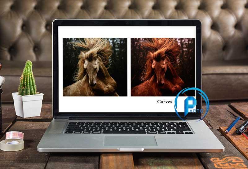 horse-photoshop