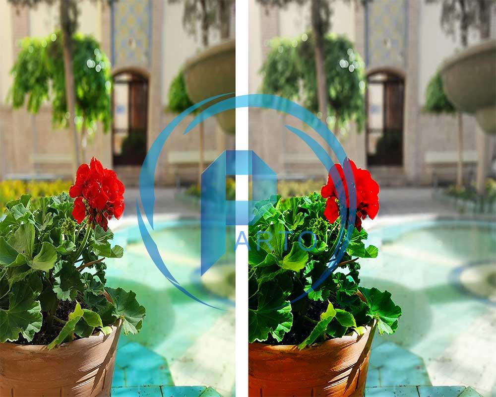 flower-photoshop