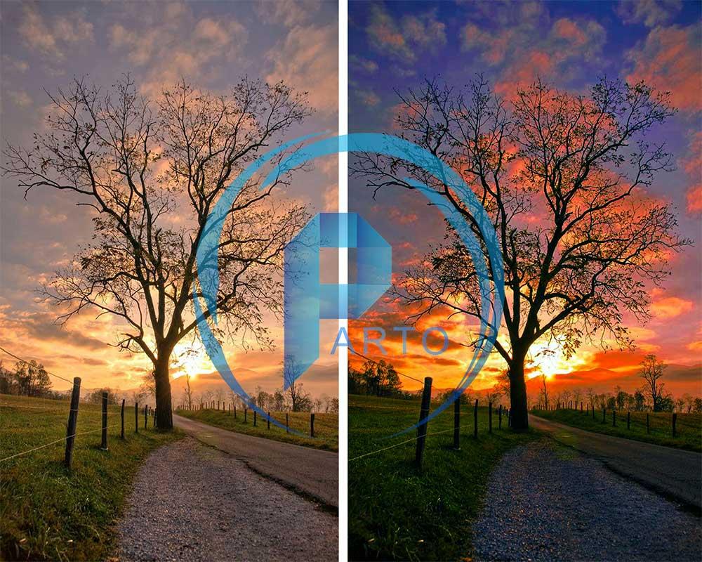 tree-rajabi-photoshop