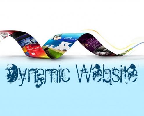 وبسایت داینامیک چیست